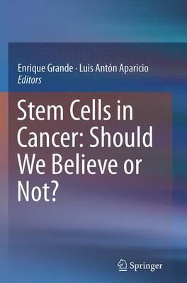 Stem Cells in Cancer: Should We Believe or Not? (Paperback)
