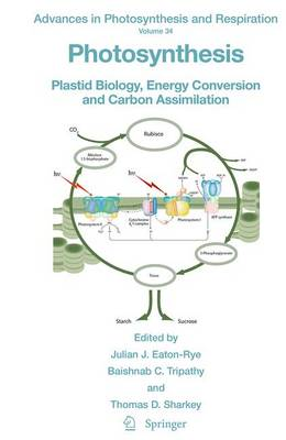 Photosynthesis: Plastid Biology, Energy Conversion and Carbon Assimilation - Advances in Photosynthesis and Respiration 34 (Paperback)