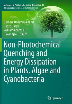 Non-Photochemical Quenching and Energy Dissipation in Plants, Algae and Cyanobacteria - Advances in Photosynthesis and Respiration 40 (Paperback)