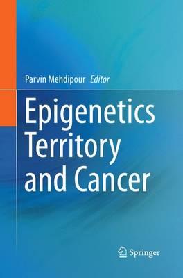 Epigenetics Territory and Cancer (Paperback)