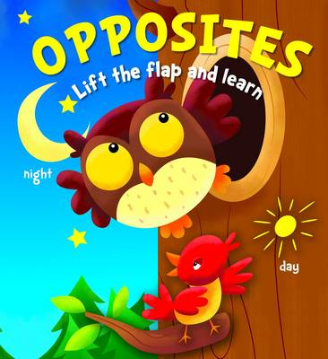 Lift the Flap and Learn: Opposites (Board book)