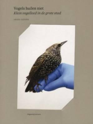 Anjes Gesink - Vogels Huilen Niet (Paperback)