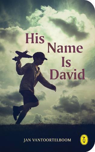 His Name Is David (Paperback)