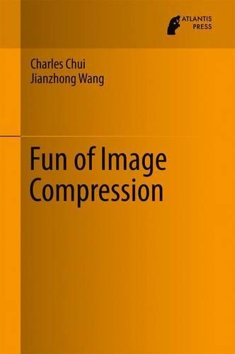 Fun of Image Compression 2017 (Hardback)