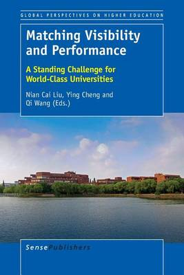 Matching Visibility and Performance: A Standing Challenge for World-Class Universities - Global Perspectives on Higher Education 35 (Paperback)