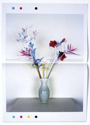 Jaap Scheeren and Hans Gremmen - Fake Flowers in Full Colour (Paperback)