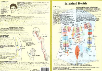 Intestinal Health -- Double Sided A4 (Poster)