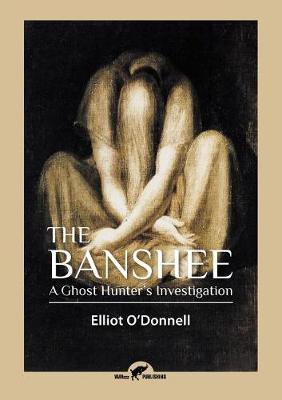 The Banshee: A Ghost Hunter's Investigation (Paperback)