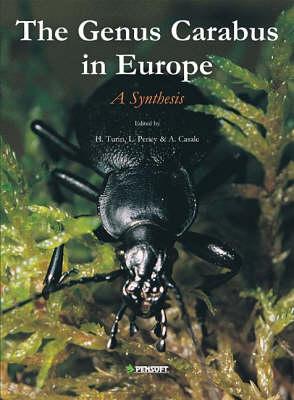 The Genus Carabus L. in Europe: A Synthesis - Fauna Europaea Evertebrata S. No. 2 (Hardback)