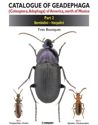 Catalogue of Geadephaga (coleoptera, Adephaga) of America, North of Mexico: Trachypachidae - Trechini Pt. 1 - ZooKeys (Hardback)