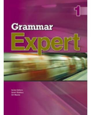 Grammar Expert 1 (Paperback)