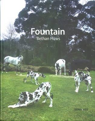 Bethan Huws: Fountain (Hardback)