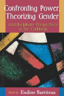 Confronting Power, Theorizing Gender (Paperback)