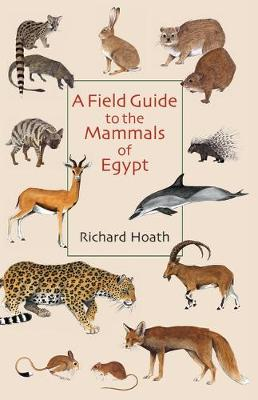 A Field Guide to the Mammals of Egypt (Paperback)