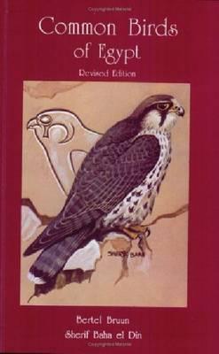 Common Birds of Egypt (Hardback)