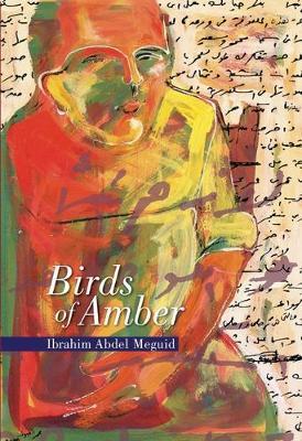 Birds of Amber (Paperback)