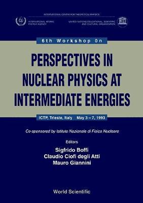 Perspectives in Nuclear Physics at Intermediate Energies: 6th: Workshop Proceedings (Hardback)