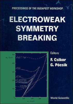 Electroweak Symmetry Breaking: Proceedings of the Budapest Workshop (Hardback)