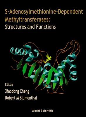 S-adenosylmethionine-dependent Methyltransferases: Structures And Functions (Hardback)