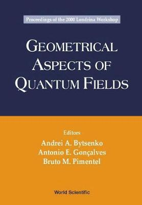 Geometrical Aspects Of Quantum Fields - Proceedings Of The 2000 Londrina Workshop (Hardback)