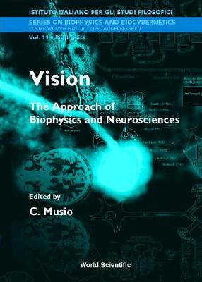 Vision: The Approach Of Biophysics And Neuroscience - Proceedings Of The International School Of Biophysics - Series On Biophysics And Biocybernetics 11 (Hardback)