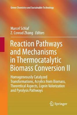 Reaction Pathways and Mechanisms in Thermocatalytic Biomass Conversion II: Homogeneously Catalyzed Transformations, Acrylics from Biomass, Theoretical Aspects, Lignin Valorization and Pyrolysis Pathways - Green Chemistry and Sustainable Technology (Paperback)