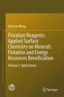 Flotation Reagents: Applied Surface Chemistry on Minerals Flotation and Energy Resources Beneficiation: Volume 2: Applications (Hardback)