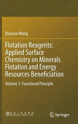 Flotation Reagents: Applied Surface Chemistry on Minerals Flotation and Energy Resources Beneficiation: Volume 1: Functional Principle (Hardback)