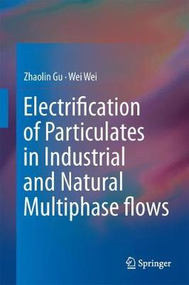 Electrification of Particulates in Industrial and Natural Multiphase flows (Hardback)