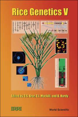 Rice Genetics V - Proceedings Of The Fifth International Rice Genetics Symposium - Rice Genetics Collection 5 (Hardback)