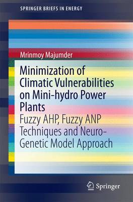 Minimization of Climatic Vulnerabilities on Mini-hydro Power Plants: Fuzzy AHP, Fuzzy ANP Techniques and Neuro-Genetic Model Approach - SpringerBriefs in Energy (Paperback)