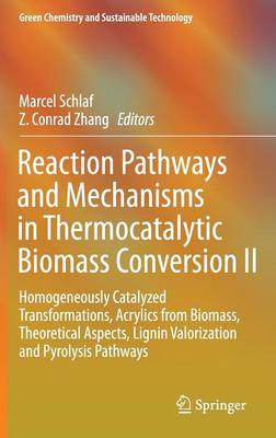 Reaction Pathways and Mechanisms in Thermocatalytic Biomass Conversion II: Homogeneously Catalyzed Transformations, Acrylics from Biomass, Theoretical Aspects, Lignin Valorization and Pyrolysis Pathways - Green Chemistry and Sustainable Technology (Hardback)