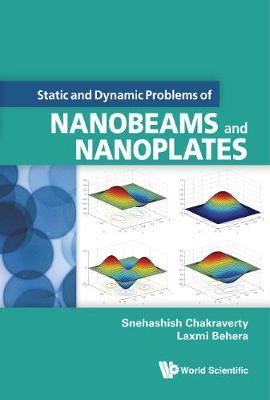Static And Dynamic Problems Of Nanobeams And Nanoplates (Hardback)
