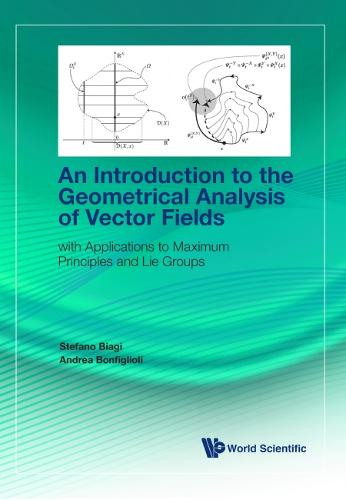Introduction To The Geometrical Analysis Of Vector Fields, An - With Applications To Maximum Principles And Lie Groups (Hardback)