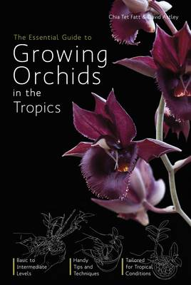 The Essential Guide to Growing Orchids in the Tropics (Paperback)