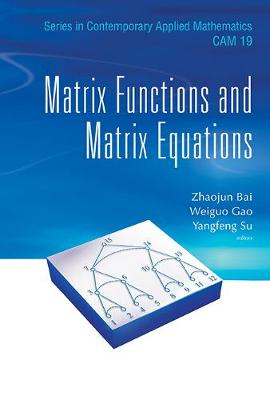 Matrix Functions And Matrix Equations - Series in Contemporary Applied Mathematics 19 (Hardback)