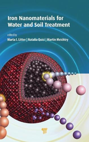 Iron Nanomaterials for Water and Soil Treatment (Hardback)
