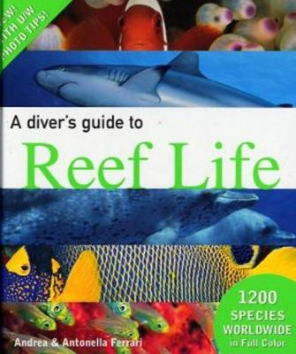 A Diver's Guide to Reef Life (Hardback)