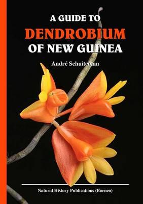 A Guide to Dendrobium of New Guinea (Hardback)