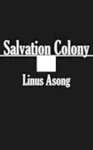 Salvation Colony (Paperback)