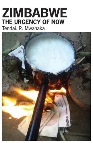 Zimbabwe: The Urgency of Now (Paperback)