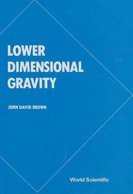 Lower Dimensional Gravity (Hardback)