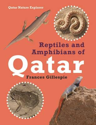 Reptiles and Amphibians of Qatar (Paperback)