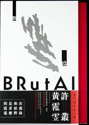 Brutal A Contemporary Photographic Book (Hardback)