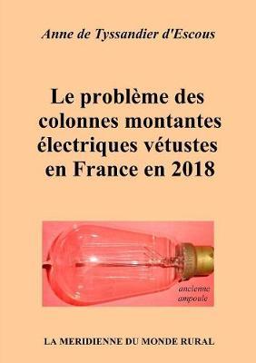 Le Probleme Des Colonnes Montantes Electriques Vetustes En France En 2018 (Paperback)
