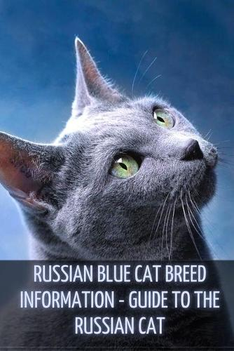 Russian Blue Cat Breed Information: Guide to the Russian Cat (Paperback)