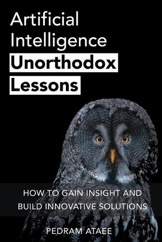 Artificial Intelligence: Unorthodox Lessons: How to Gain Insight and Build Innovative Solutions - Entrepreneurship 2 (Paperback)