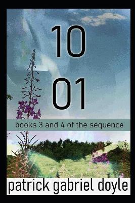 1001: books 3 & 4 (Paperback)