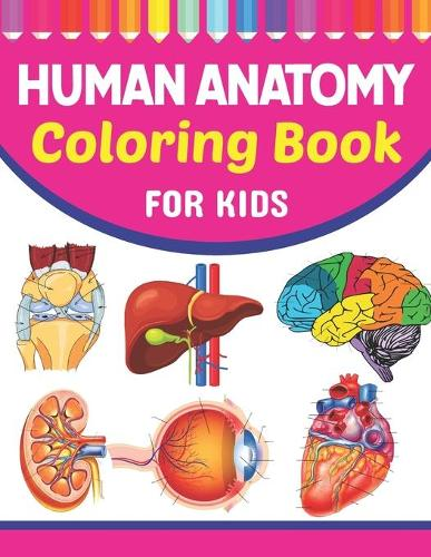 Human Anatomy Coloring Book For Kids: Collection of Simple Illustrations of Human Body Parts. Human Body Parts For Children's Boys & Girls. Brain Heart Lung Liver Figure Ear Anatomy Coloring Book. Learn Human Body Parts Anatomy With Fun & Easy. (Paperback)