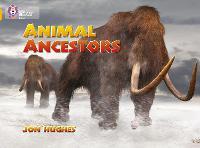 Animal Ancestors: Band 09/Gold - Collins Big Cat (Paperback)